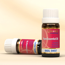 Basil Essential Oil (linalool c.t.)