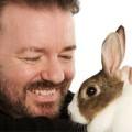 Ban animal tested for cosmetics