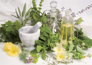 Healing herbs are in the news again