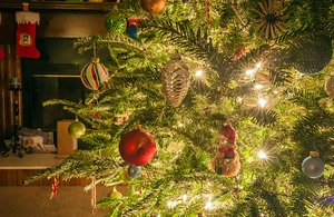 Pine essential oil can add a touch of realism to your tree